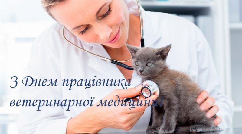 Шановні працівники ветеринарної медицини!