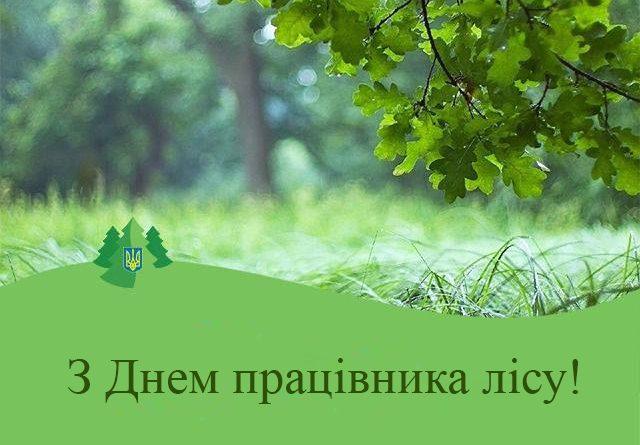 Шановні працівники лісового господарства Городнянщини!